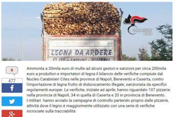 Multe in Campania per legna non tracciata forni pizza